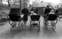 Baby Carriages Central Park 1971