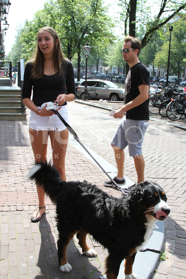 Walking the Dog in Amsterdam
