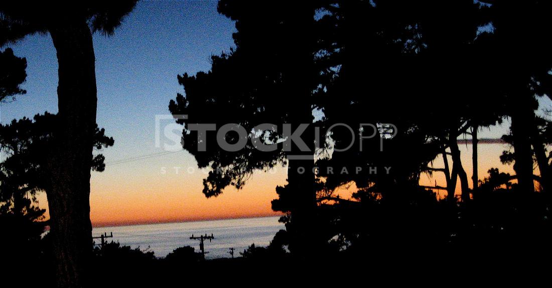 Pacific Grove,California